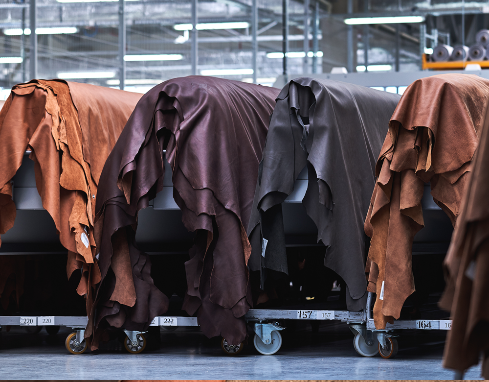 What will the Tannery in  2030 be like?